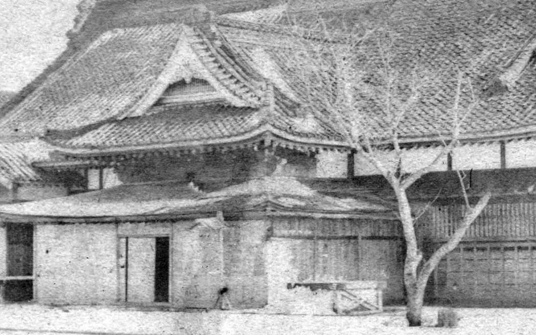 hakodate bugyosho plum old photo.jpg