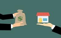共有不動産、気になる税金負担は?誰が支払うのかの画像