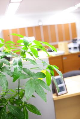 川崎パシフィック法律事務所の画像