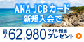 ANA JCBカード(一般カード)
