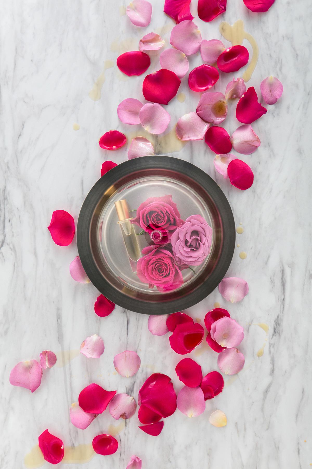 05 Rose