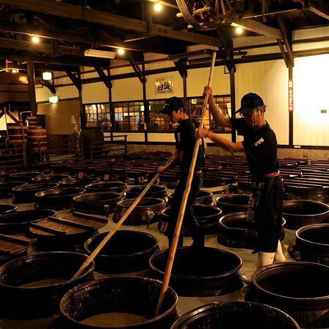 薩摩酒造(明治蔵)