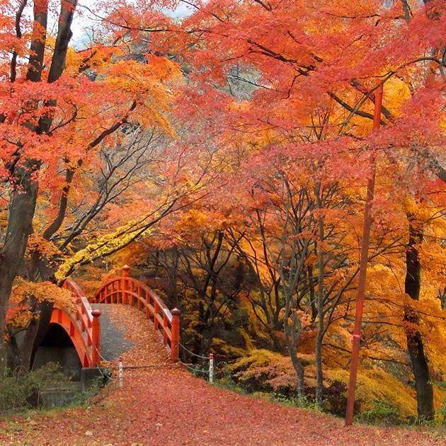 矢祭山公園(月見橋)