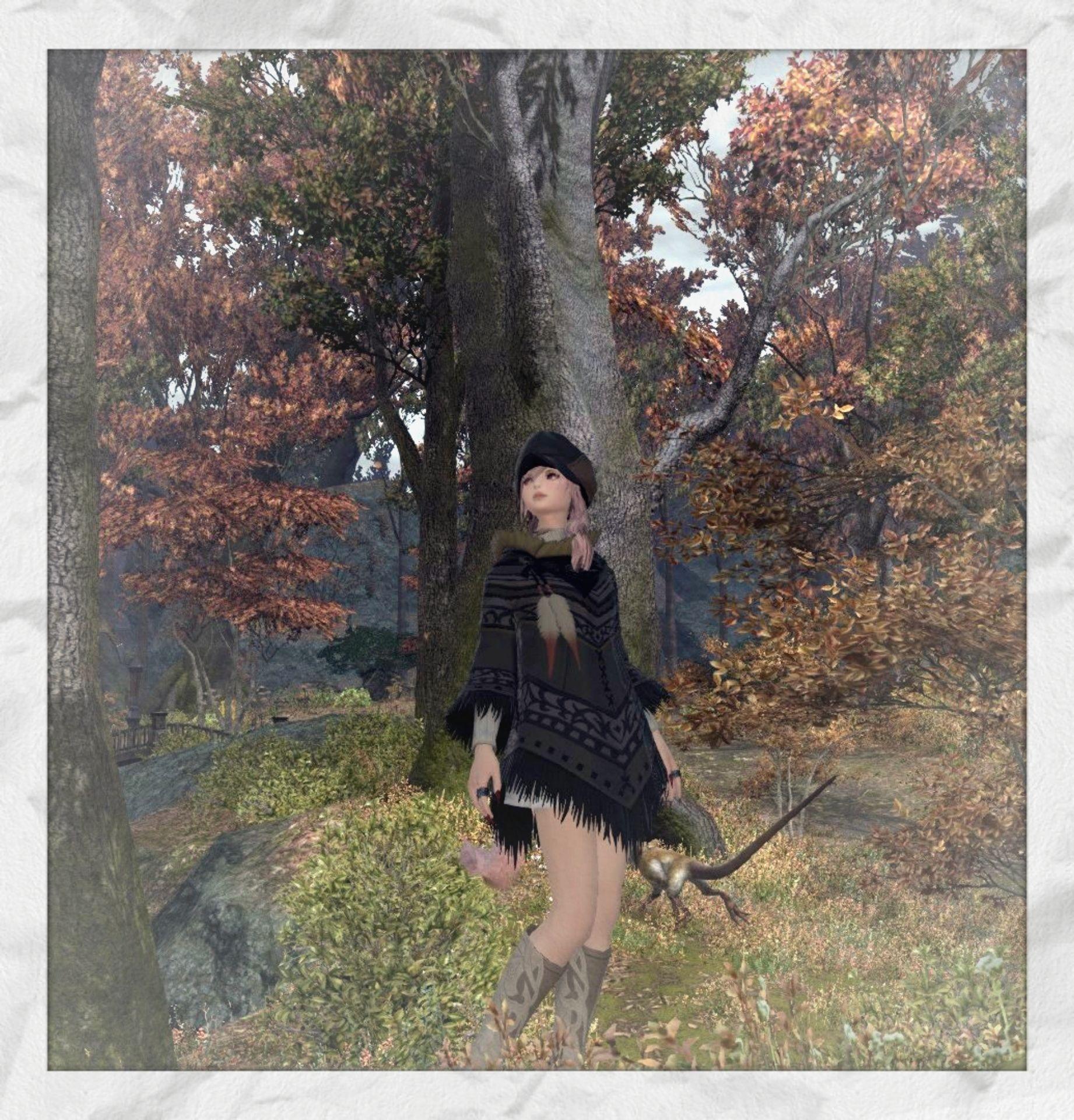 秋だねぇ~(*^^*)