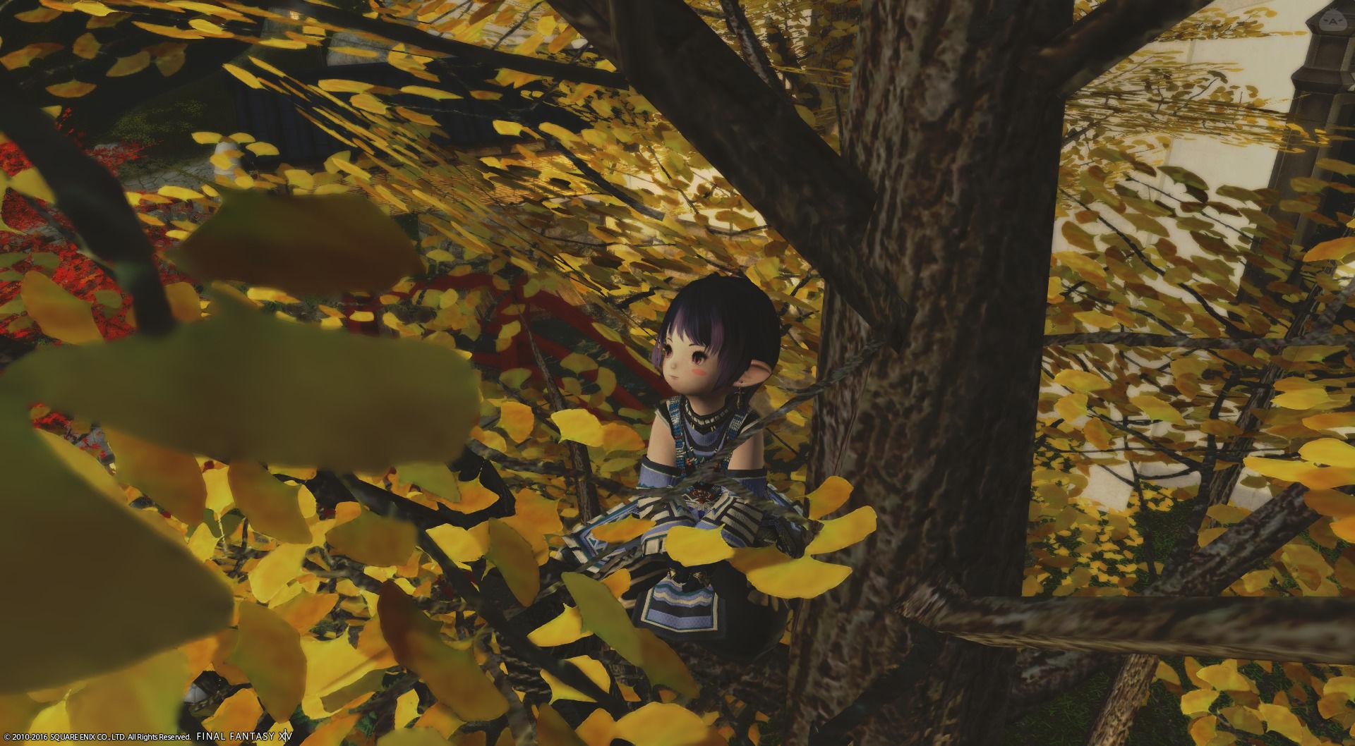 秋の終わりも近づいて