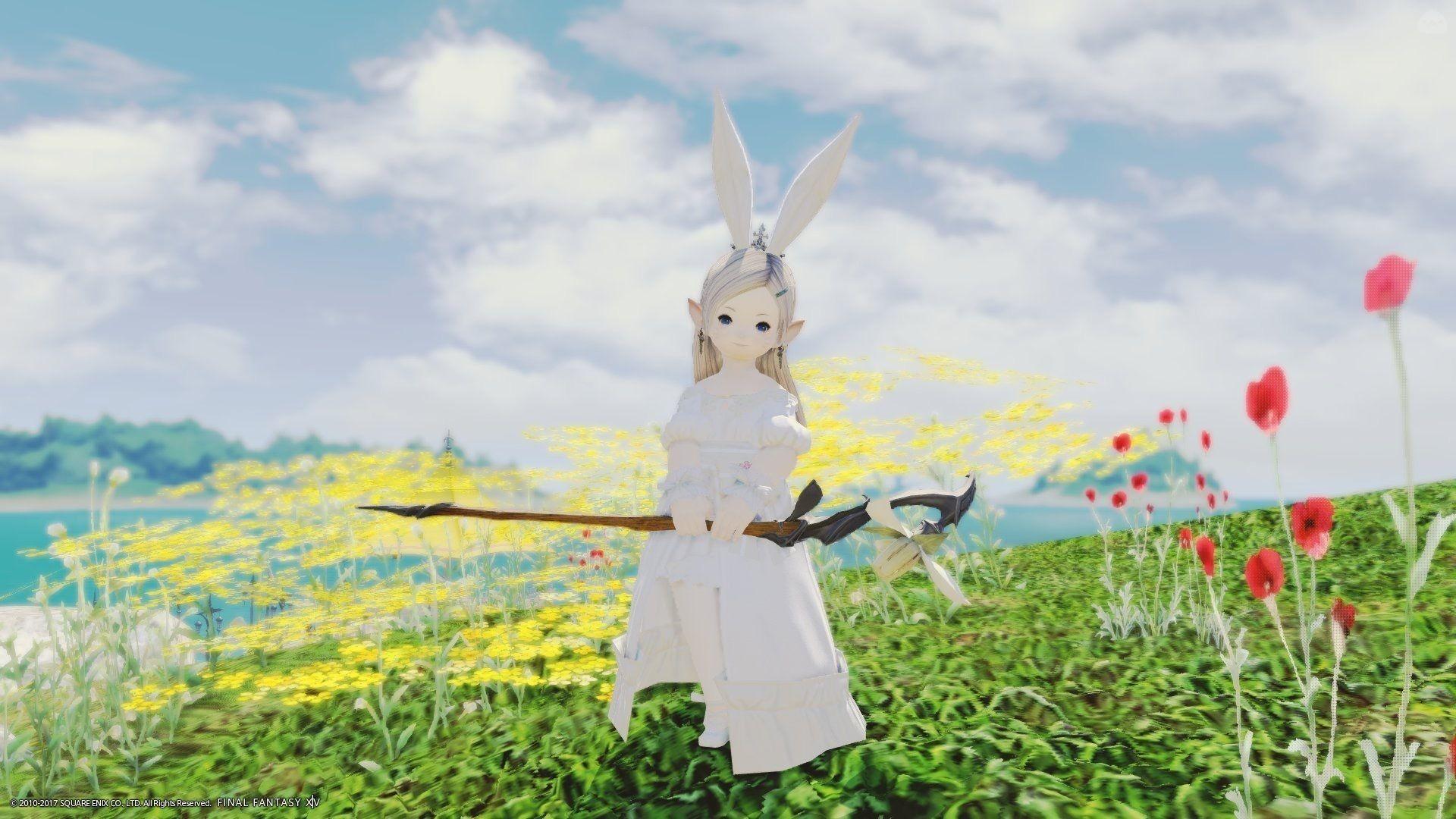 春の白うさちゃん!