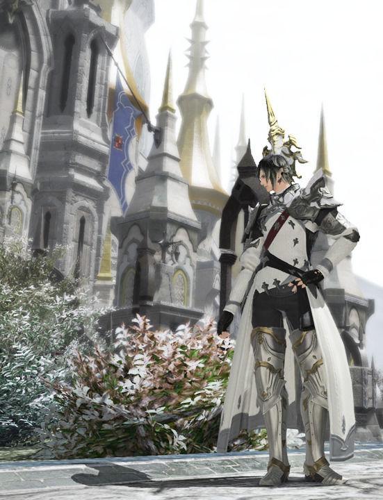 白の竜騎士さん