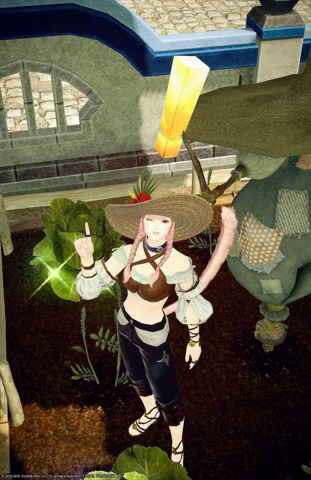 夏の園芸師
