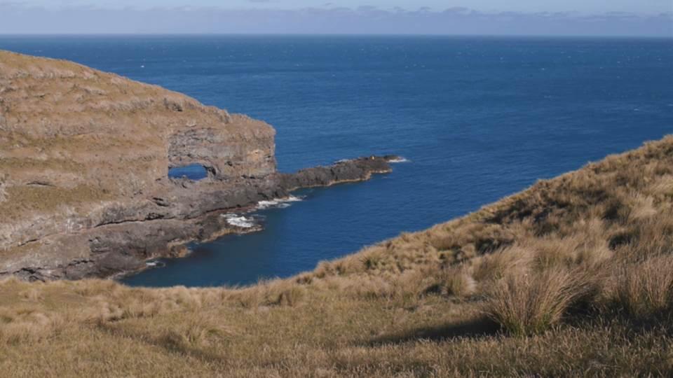 landskip_Newzealand_LS_M2015_028_50Mbps-Thumbnails.jpg