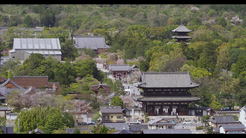sato_K436_C006_京都_京都府京都市_京都の仁和寺-Thumbnails.jpg