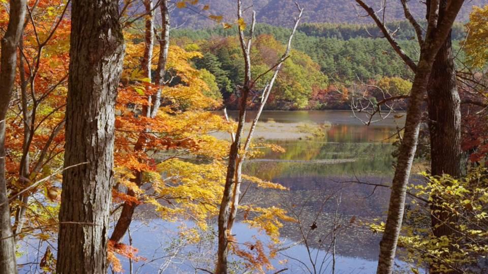 sato_fukushima_K751_C004kannonnuma-Thumbnails.jpg
