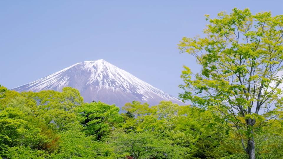 sato_shizuoka_fujisan_J235_C004-Thumbnails.jpg