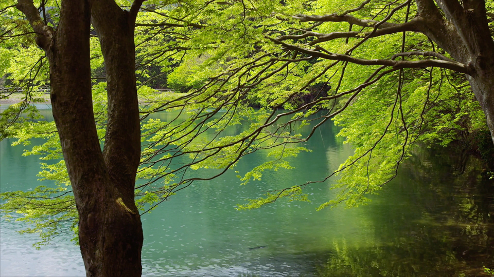 sato_yamanashi_L148_C013_minamiinagako_lp_山梨県南アルプス市_南伊奈ヶ湖_web-Thumbnails.jpg