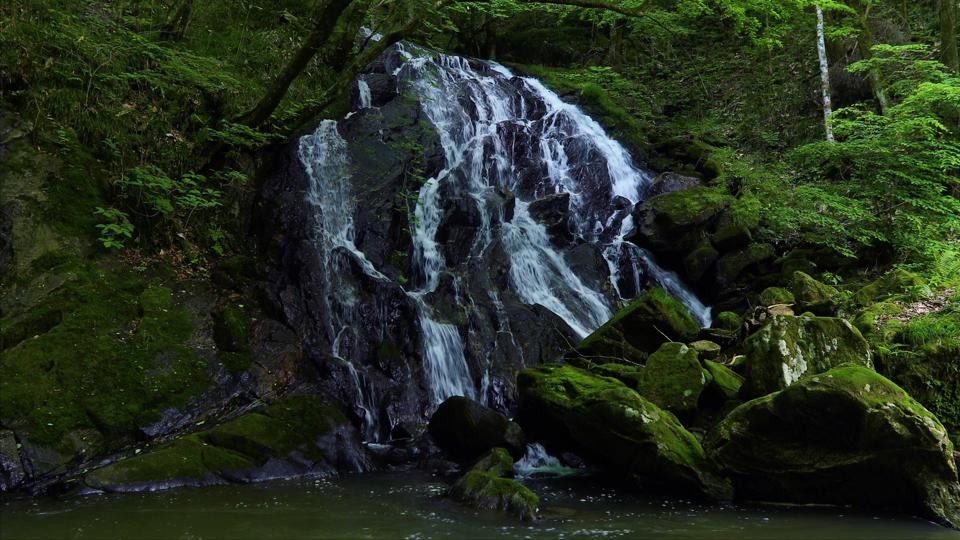 shimizu20180517_004_福島県鮫川村_江竜田の滝-Thumbnails.jpg