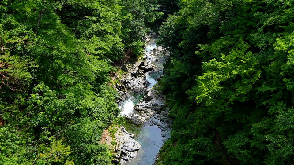 shimizu_20170804_nakatsugawa_03福島耶麻郡北塩原村-Thumbnails.jpg