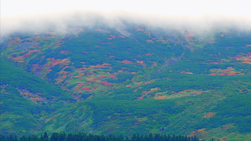 yamazaki_023旭岳紅葉-Thumbnails.jpg