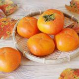 秋のおすすめフルーツといえば!手頃なふるさと納税の返礼品「柿」のおすすめを紹介