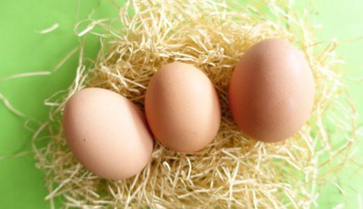 質の良い地場の卵が目白押し、ふるさと納税の返礼品「卵」のおすすめを紹介
