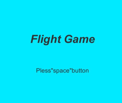 フライトゲーム