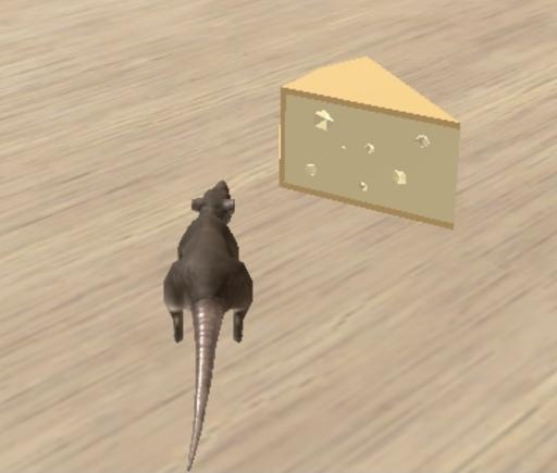 Rat Run !!