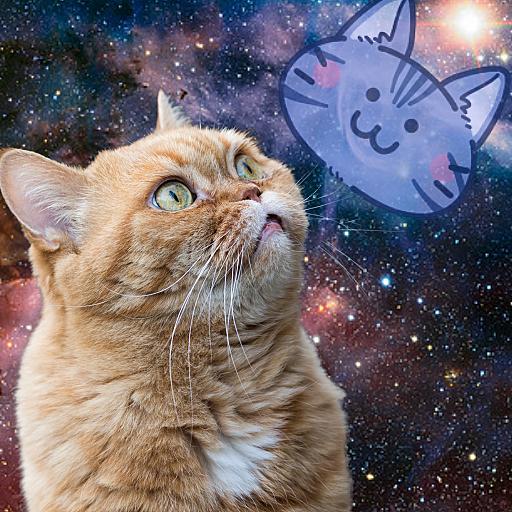 宇ちゅう猫