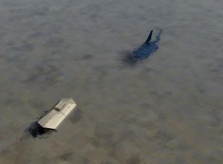サメから逃げる