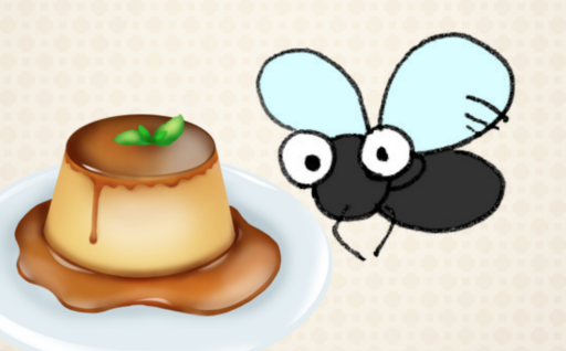 Fly & Pudding