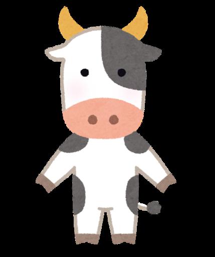 牛型流星群