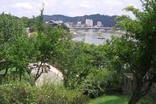 高台から見た南江