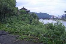 南江と矗石楼(チョクソンヌ)
