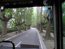 霊谷寺から中山門大街へ伸びる道