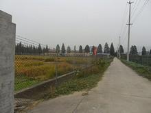 農業試験場の農園