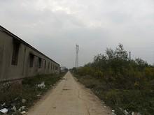田舎道と送電線