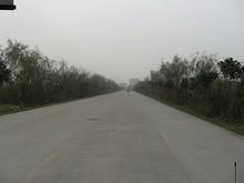 八卦洲の田舎道
