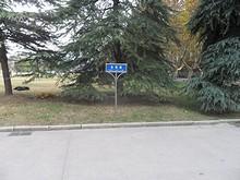 農業大学 北苑路