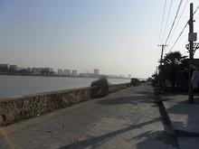 長江沿いの道