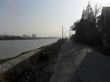 夾江大橋が見える