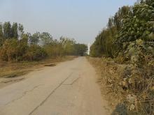 川沿いの道を辿って夾江大橋方面へ