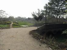 農村の古い橋