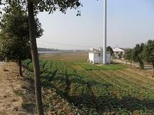教会周辺の農村