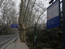 陵園路&観光バスのバス停