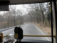 公園→植物園→明孝陵をつなぐ道