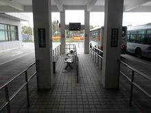 洋山専線バス乗場