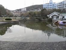 島沁公園の池