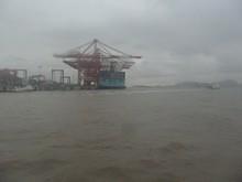 洋山深水港