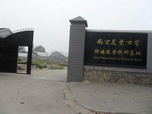 南京農業大学の農園