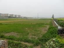バス終点の銅山村