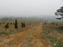 銅山南側の村