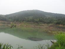 銅山とため池