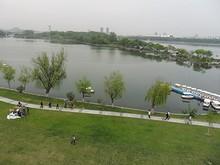 城壁から見た玄武湖公園
